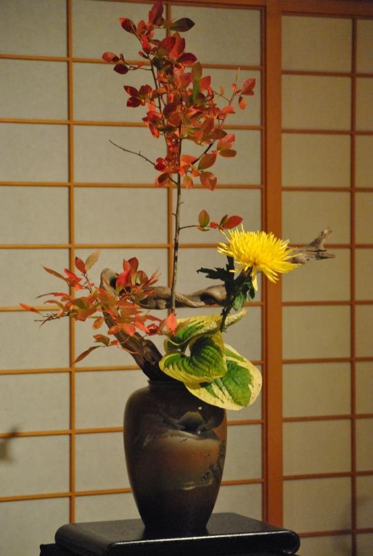 Hoa Cuc va Nghe thuat Ikebana (53)