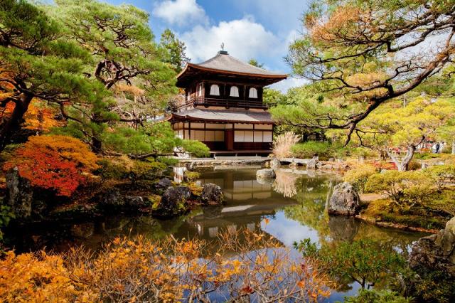 Lá Thu ở Nhật (9)